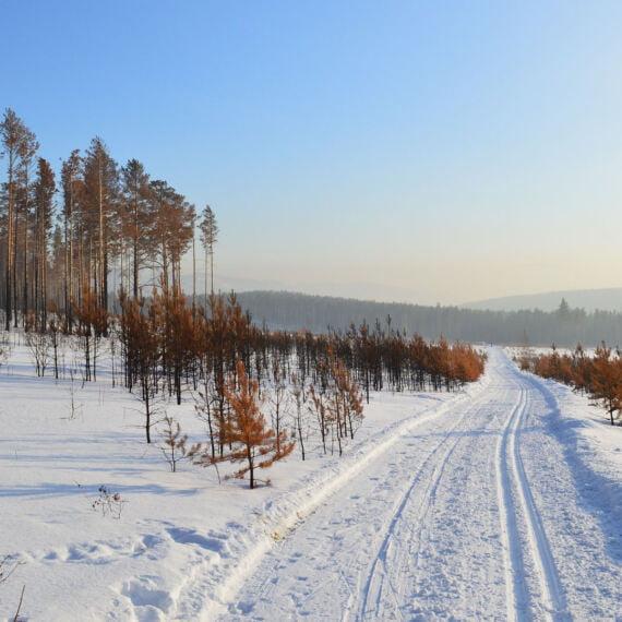 MineSpot otwiera największą kopalnię kryptowalut w środku Syberii