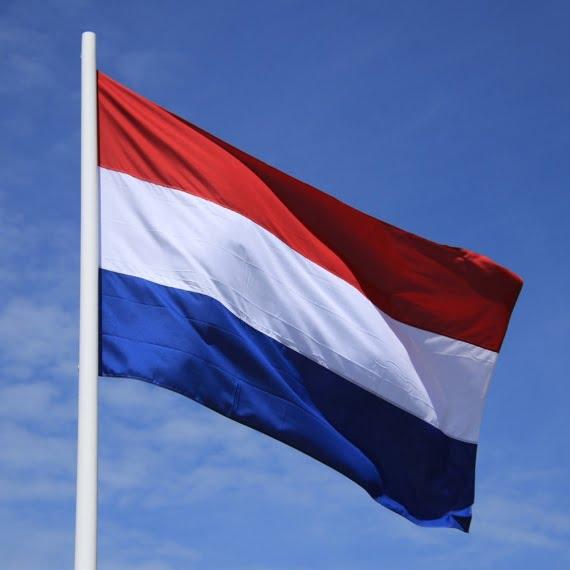 Holandia musi zakazać Bitcoina – mówi holenderski urzędnik